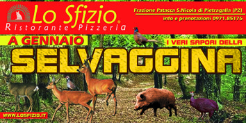 SELVAGGINA web3